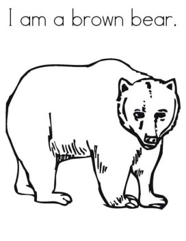 Bear Coloring Pages Free to Print 316ah