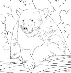 Bear Coloring Pages to Print 96721