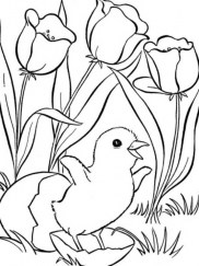 Cute Cartoon Animal Coloring Pages a53vf9