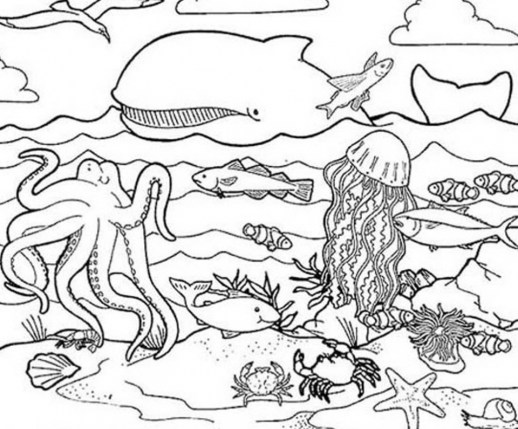 Ocean Animals Coloring Pages 2ah4l