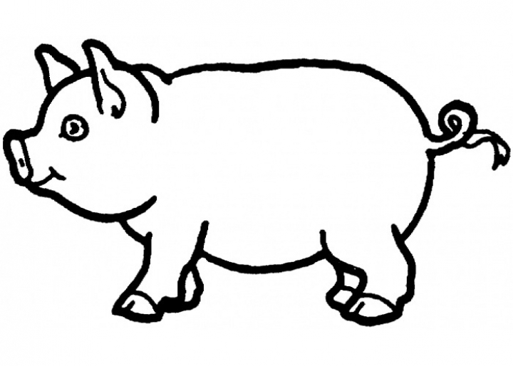 Pig Coloring Pages Free   ha18l
