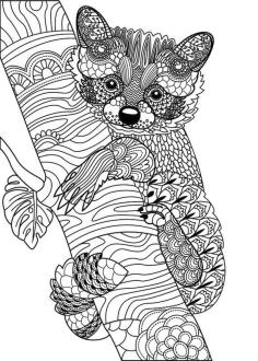 Adult Coloring Pages Animals Bear 2