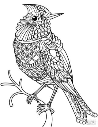 Adult Coloring Pages Animals Bird 2