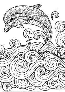 Adult Coloring Pages Animals Dolphin 1