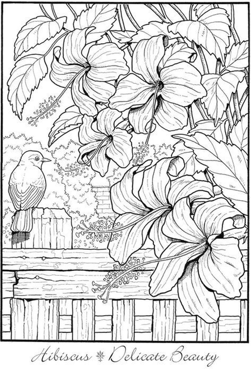 Flower Pattern Coloring Pages to Print for Adults ilm9