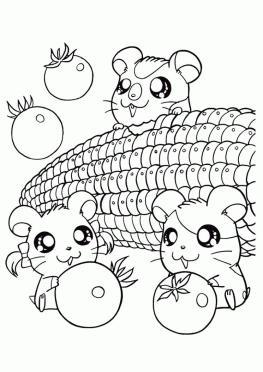 Kawaii Animal Coloring Pages Hamster