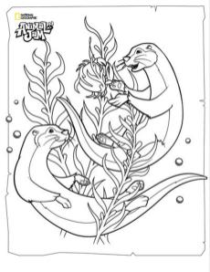 Otters Animal Jam Coloring Pages Printable 8ott