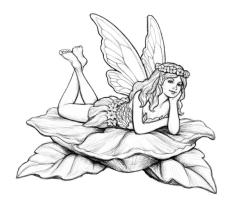 Fairy on Leaves Coloring Pages tg1
