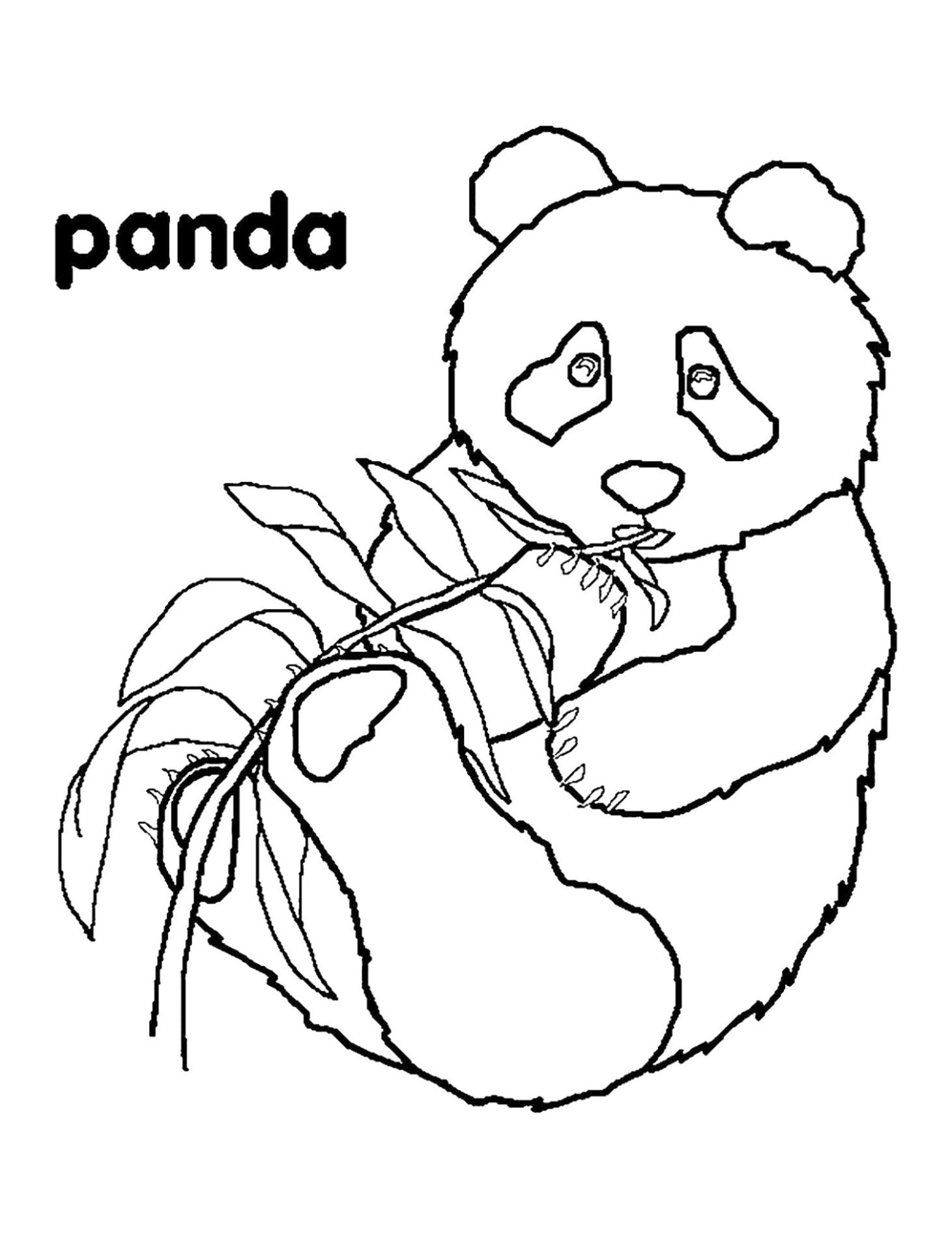 Panda Coloring Pages to Print