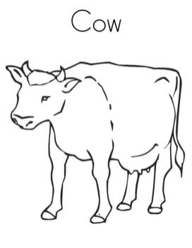 Cow Animal Coloring Pages C Is for Cow