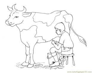 Cow Animal Coloring Pages Young Boy Milking a Cow