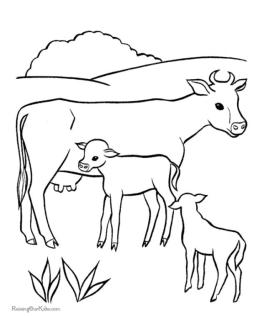 Cow Coloring Pages Printable Mother Cow and Her Calves
