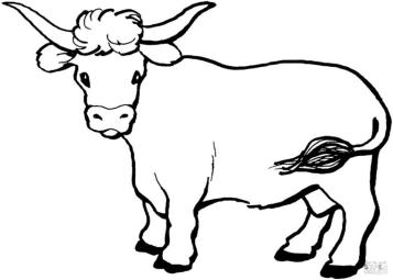 Cow Coloring Pages to Print Cow Drawing for Toddlers