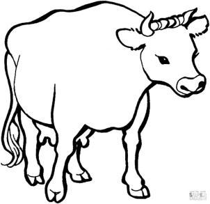 Cow Coloring Pages to Print Simple Cow Drawing for Kids