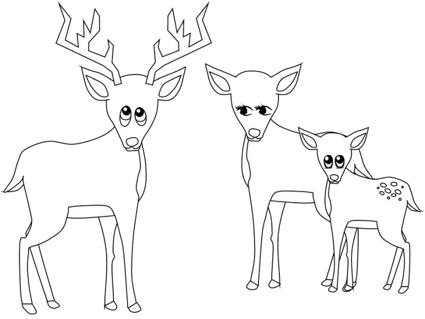 Deer Coloring Pages Free Printable Deer Family Simple Drawing