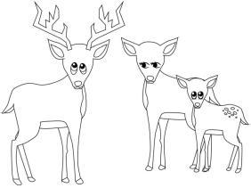 Deer Coloring Pages Free Printable Deer Family Simple Drawing