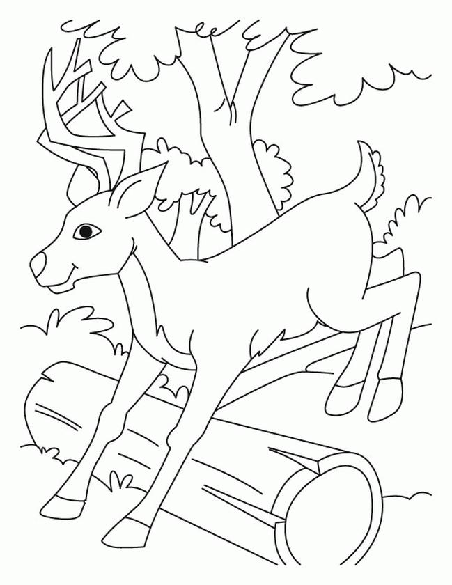 Deer Coloring Pages Online Baby Deer Jumping over a Log
