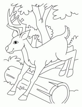 Deer Coloring Pages Online Baby Deer Jumping over a Log