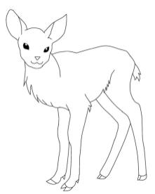 Deer Coloring Pages to Print Cute Baby Deer