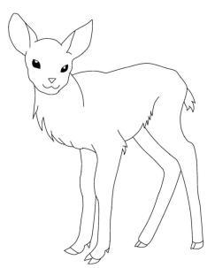 Deer Coloring Pages to Print Cute Baby Deer