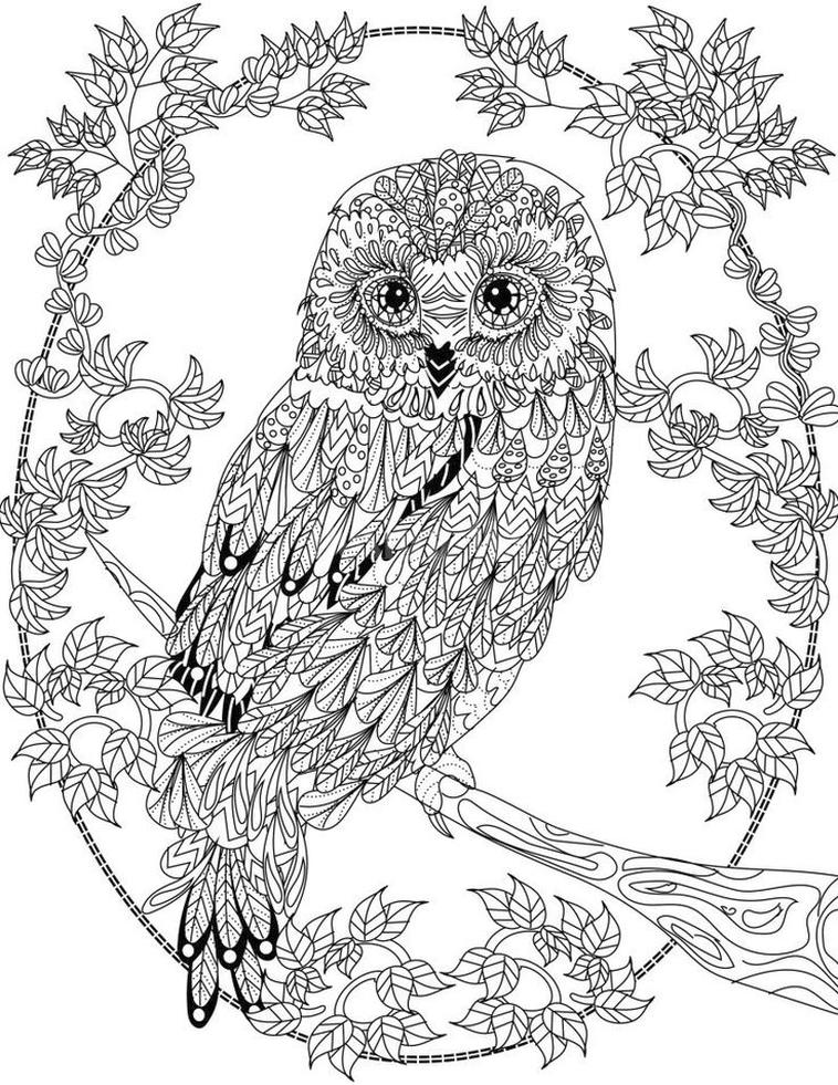 Get This Free Owl Coloring Pages For Adults Be27 !