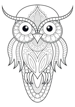 Owl Adult Coloring Pages 1sp4