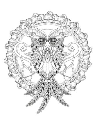 Owl Adult Coloring Pages 4md3