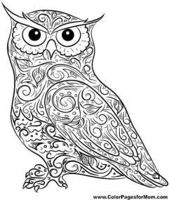 Printable Owl Coloring Pages for Grown Ups dc40