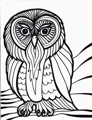 Printable Owl Coloring Pages for Grown Ups go72