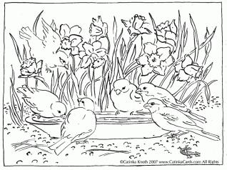 Spring Adult Coloring Pages A flock of Little Birds in Spring