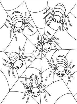 Many Baby Spiders Having Fun on the Web Coloring Page Spider Printable for Kids