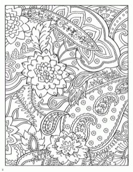 Abstract Coloring Pages for Adults Paisley and Floral Patterns