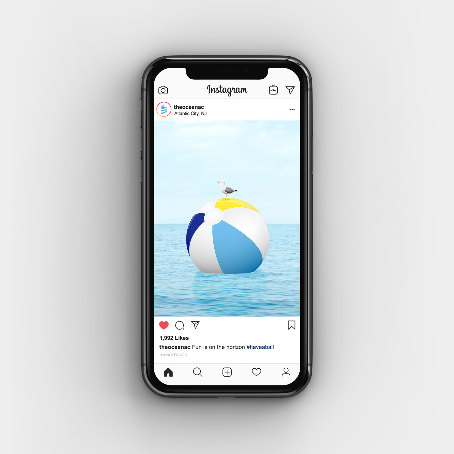 Seagull on beach ball instagram