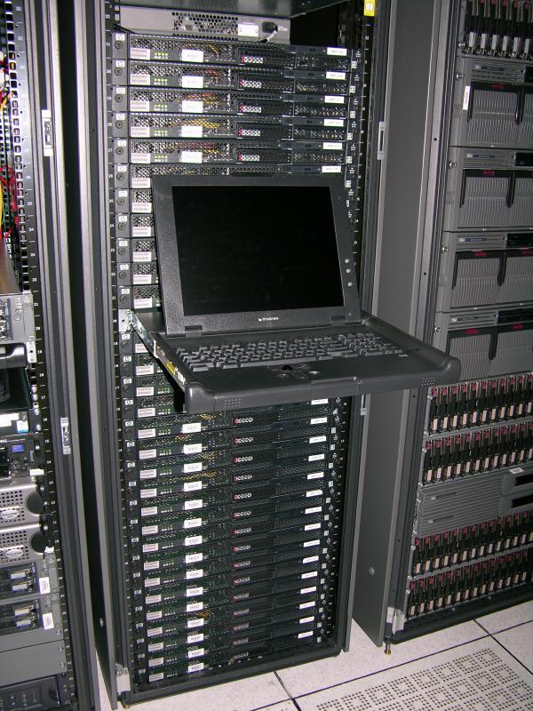 pines_rack_2006_4