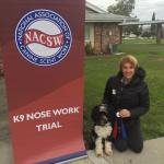 amy and finn at nose work trial