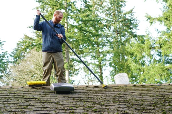 roof cleaning professional cleaners