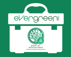 EverGreenCoin Proof of Environment Toolbox