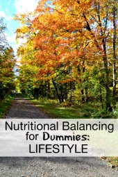 nutritional balancing for dummies lifestyle