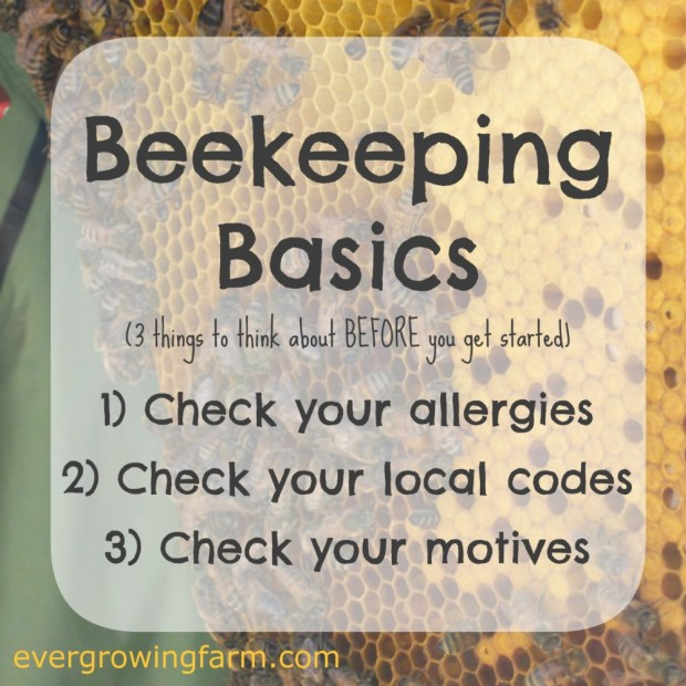 Beekeeping Basics - Three things to think about BEFORE you get started