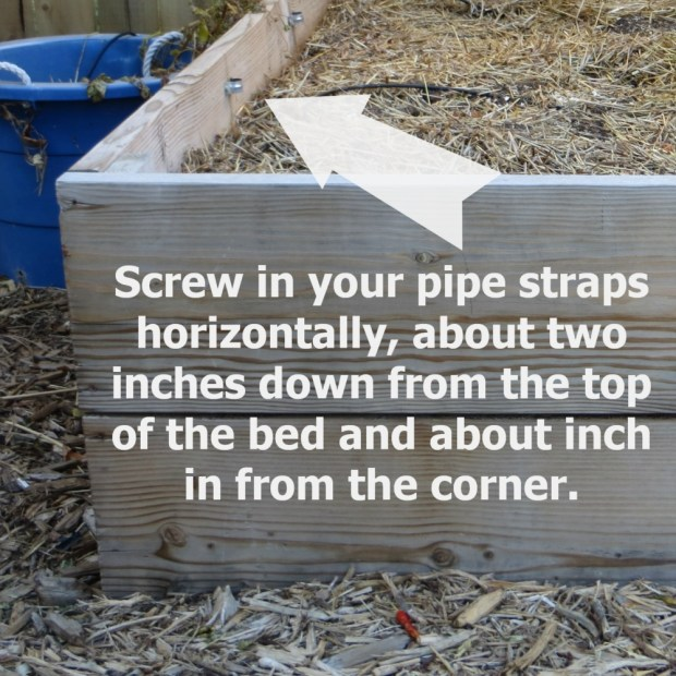 Installing pipe straps on your raised bed turned hoop house