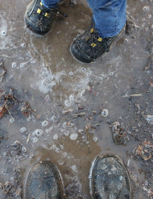 Puddle Jumping - Boots