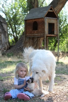 Ember with Jerry and Akuna