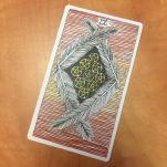 the-wild-unknown-tarot-nine-of-pentacles