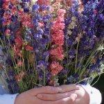 Everlasting Love Of Flowers