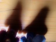 Shadow Selfie 04