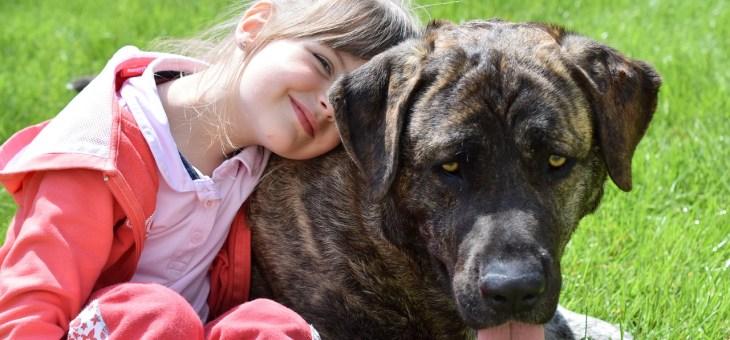 ¿Por qué los niños que conviven con perros tienen ventaja sobre el resto?