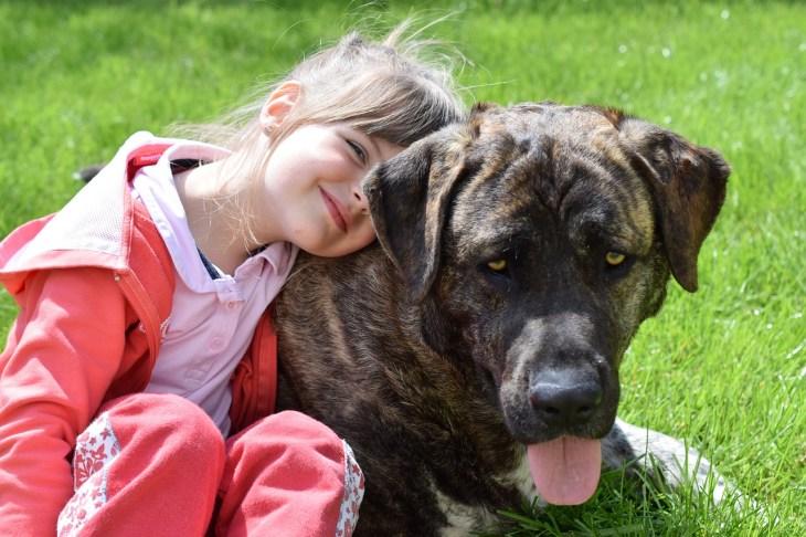 child-2779605_1280-1024x682 ¿Por qué los niños que conviven con perros tienen ventaja sobre el resto?