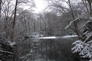 Neuer See at Tiergarten