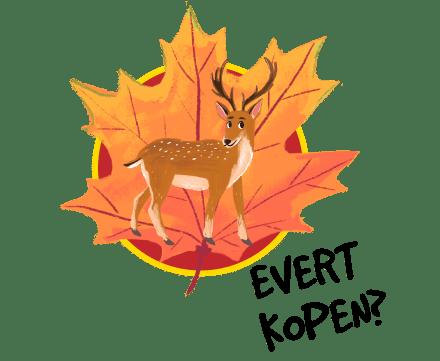 Koop Evert