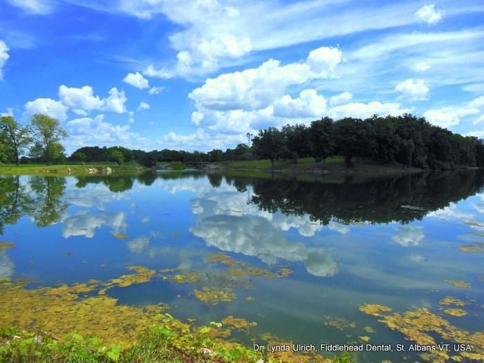 Image: Hickory Lake on Sugar Creek Farm, Atlanta, Illinois, USA